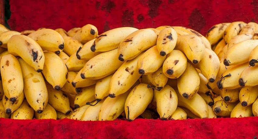 20160924 hallo minden bananen fairtrade.jpg